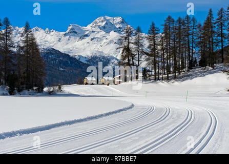 Cross-country skiing trails on the frozen lake Champfersee, peak Gipfel Piz de la Margna behind, Champfer, Engadin valley, Grisons, Switzerland - Stock Photo
