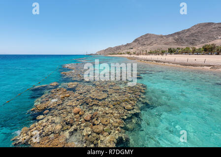 Eilat, Israel; 12 Sep 2020:  Located near the Egyptian border, conservation of the coral reefs is the primary reason of the creation of this Nation