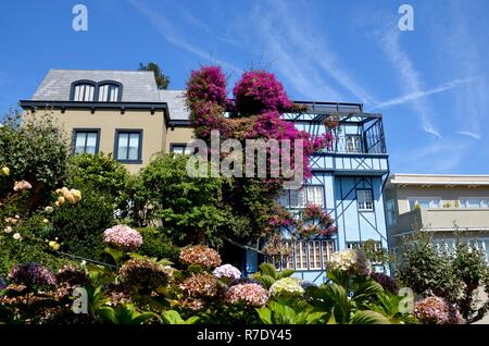 Lombard Street in San Francisco, colorful hydrangea flowers around, pastel colored houses, blue sky, sunny, famous - Stock Photo