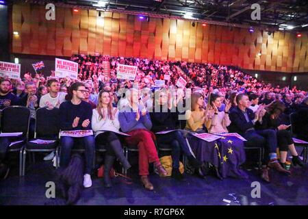 Hundreds of people are seen attending the rally. Hundreds of people attend the Best for Britain and the People's Vote campaign's rally at Excel Centre in East London on the eve of the week in which Parliament will vote on Prime Minister Theresa May's Brexit withdrawal deal. - Stock Photo