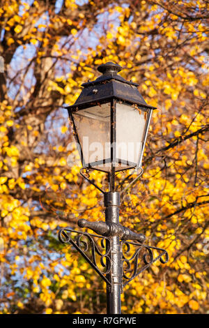Old gaslight style street lamp against Autumn tree colours in the Cheshire city of Chester England UK - Stock Photo