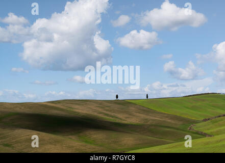 Lush green hills with cypress trees and cloud shadows on a sunny day, Tuscany, Italy - Stock Photo