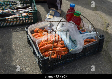 Cooked crayfish are cooked in a box and prepared for sale. - Stock Photo