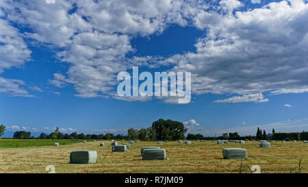 Making hay while the sun shines in New Zealand - Stock Photo