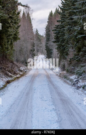 a straight road through a swedish forest in december 2018 with ice and snow on it - Stock Photo