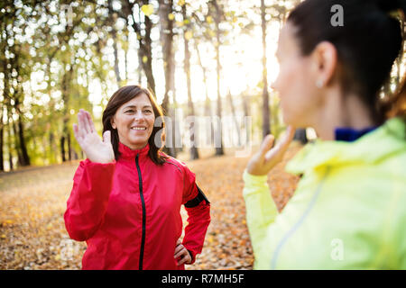 Two female runners stretching outdoors in forest in autumn nature at sunset. - Stock Photo