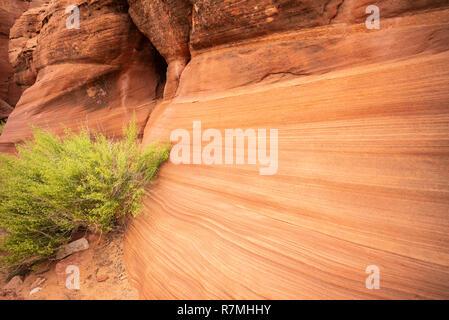 Waterhole Canyon - a slot canyon caused by flash flooding, cutting through the red Navajo sandstone rocks near Page, Arizona, USA - Stock Photo