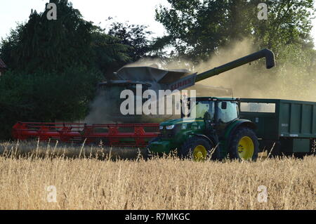 Combine and tractor in harvest - Stock Photo