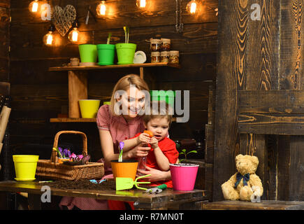 Irrigation concept. Happy family spray young plant with water for irrigation. Irrigation of houseplant. Drainage and irrigation - Stock Photo