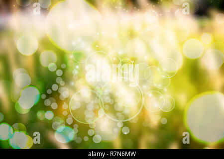 Abstract nature background, Image of green blurred garden background, De focused of Natural green leaf blurred background. Bokeh effect lighting.