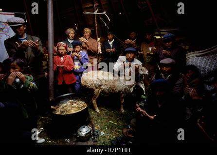 China, Xinjiang Autonomous Province, 1994 Under a yurt, on the heights of Mount Altai, the members of a Kazakh family pray before the sacrifice of a sheep during the clan leader's son circumcision celebration - Stock Photo