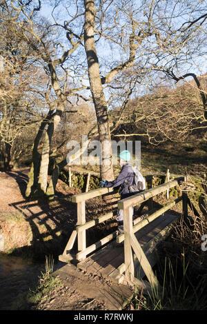 Footbridge in Dundale Griff on Levisham Moor in the North York Moors - Stock Photo