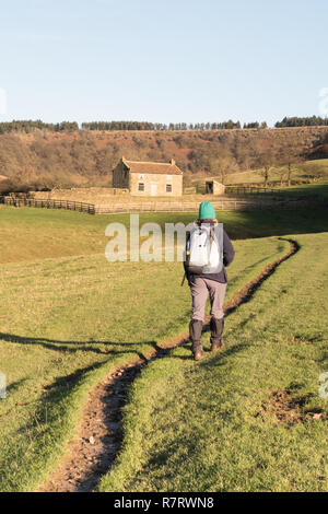 A walker at Low Horcum in the Hole of Horcum in the North York Moors - Stock Photo