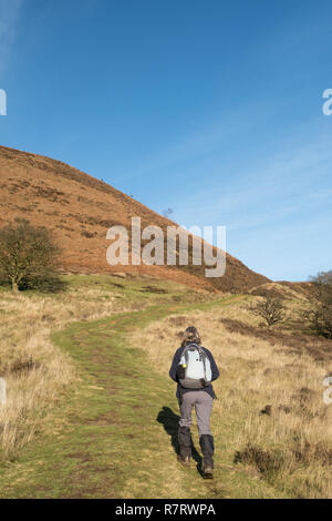 A walker in the Hole of Horcum in the North York Moors - Stock Photo