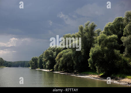 Danube River, Danube Delta Biosphere Reserve, near Tulcea, Romania - Stock Photo