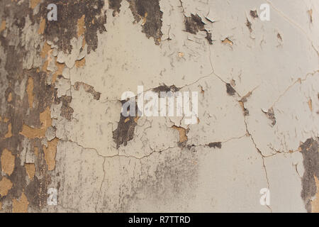 White Plastered Brick Wall Texture. Whitewash Brick Wall Seamless Surface. Abstract White Wash Background. White Brickwall Wallpaper. - Stock Photo