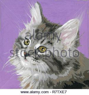 Portrait of long haired tabby kitten - Stock Photo