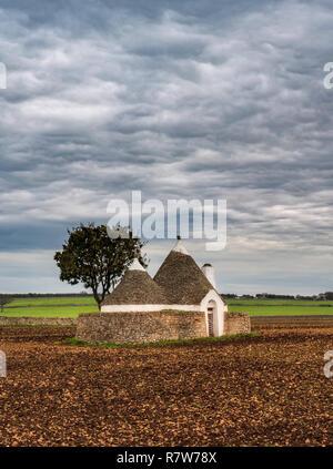 Lonely Trulli house near Alberobello, Italy - Stock Photo