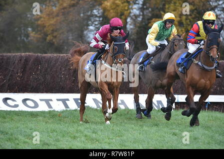Point to Point meeting at Cottenham - Stock Photo