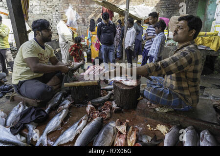 July 23, 2018 - Varanasi, Uttar Pradesh, India - People are seen at the fish market in Varanasi..Varanasi is a city in the northern Indian state of Uttar Pradesh dating to the 11th century B.C. Regarded as the spiritual capital of India, the city draws Hindu pilgrims who bathe in the Ganges River's sacred waters and perform funeral rites. The river is dedicated to the Hindu god Shiva. (Credit Image: © Enzo Tomasiello/SOPA Images via ZUMA Wire) - Stock Photo