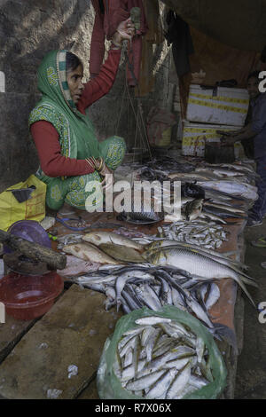 July 23, 2018 - Varanasi, Uttar Pradesh, India - A woman seen selling fish at the market in Varanasi..Varanasi is a city in the northern Indian state of Uttar Pradesh dating to the 11th century B.C. Regarded as the spiritual capital of India, the city draws Hindu pilgrims who bathe in the Ganges River's sacred waters and perform funeral rites. The river is dedicated to the Hindu god Shiva. (Credit Image: © Enzo Tomasiello/SOPA Images via ZUMA Wire) - Stock Photo