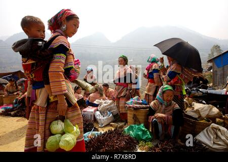 Vietnam, Lao Cai province, Sapa district, Coc ly market at Hmong flower - Stock Photo