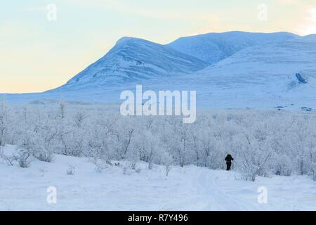 Sweden, Lapland, region listed as World Heritage by UNESCO, Norrbotten County, Snowshoe Hiker in Abisko National Park - Stock Photo
