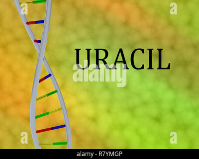 3D illustration of URACIL script with DNA double helix , isolated on colored background. - Stock Photo