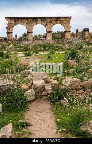 Morocco, Meknes, Volubilis Roman site, three arches on Decumanus Maximus, main street - Stock Photo
