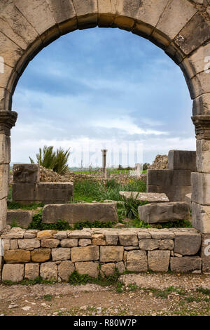 Mc480 Morocco, Meknes, Volubilis Roman site, view through one of three arches on main street - Stock Photo