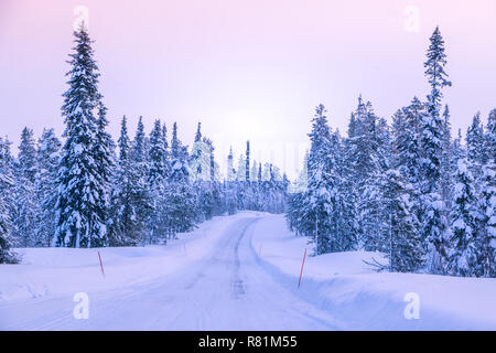 Winter road through the northern forest. Snow-covered spruces. Red landmarks marking the edges of the roadway - Stock Photo