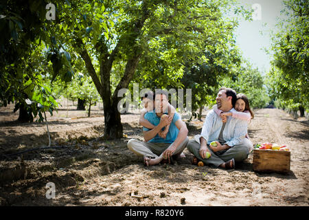 Portrait of two laughing men sitting with their two daughters in an apple orchard in the sunshine. - Stock Photo