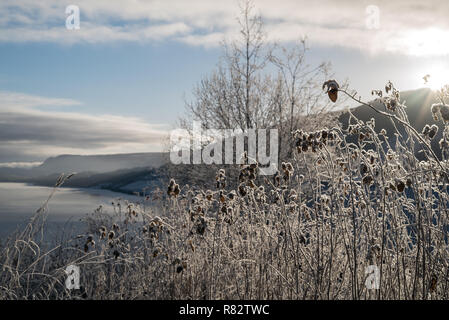 Frosted winter landscape in cold temperature with ice and hoar frost on lake, rime on crisp, frozen leaves and mountains in the horizon at sunset - Stock Photo