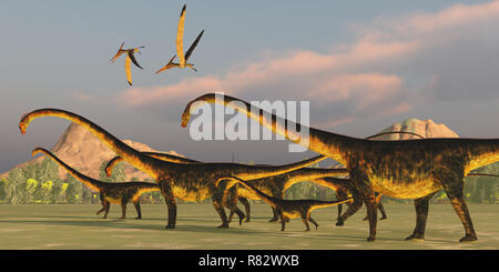 Barosaurus Dinosaur Herd - A Barosaurus dinosaur herd watches over it's youngsters as two Pteranodon reptiles fly over. - Stock Photo