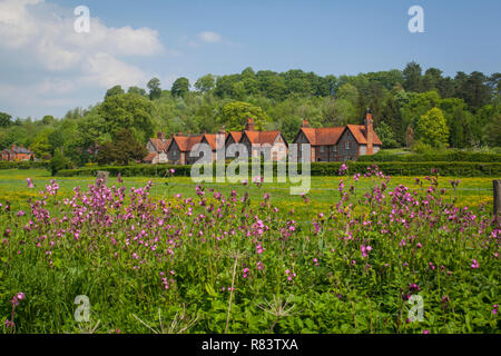 Traditional brick and flint cottages at Hambleden, Buckinghamshire with pink wild flowers in the foreground - Stock Photo