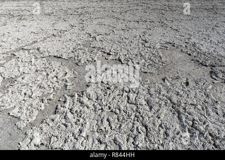 Dry lake bed with natural texture of cracked clay and salt on the ground cause of dehydration for a long time, Nxai Pan National Park, Botswana - Stock Photo