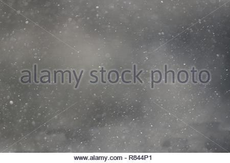 snow falling background 4k winter wonderland - Stock Photo