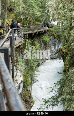 Hike along Johnston Canyon Lower and Upper Falls trail in Jasper National Park, Alberta, Canada.  The catwalks that are affixed to the limestone cliff - Stock Photo