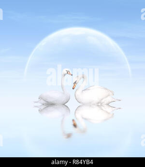 Two white swans on blue background Stock Photo