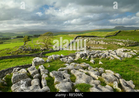 Beautiful view over limestone pavement & rolling upland countryside from Winskill Stones - near Langcliffe & Stainforth, Yorkshire Dales, England, UK. - Stock Photo