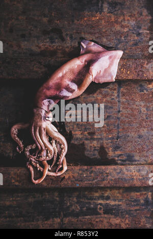 Seafood squid calamary. Fresh raw whole squid with tentacles on rustik background. Top view. - Stock Photo