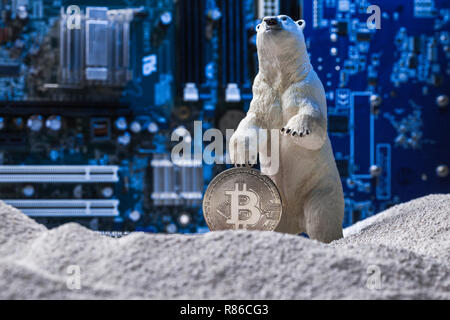 White polar bear holding a silver Bitcoin in snow on blue intergrated circuit background as Nuclear Winter concept - Stock Photo