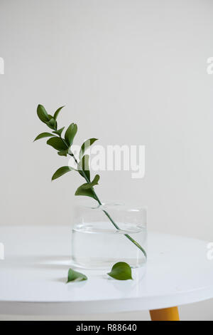 A bunch of twigs in a glass jar on the wooden table. - Stock Photo