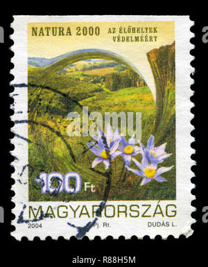 Postage stamp from Hungary in the Environment Protection series issued in 2004 - Stock Photo
