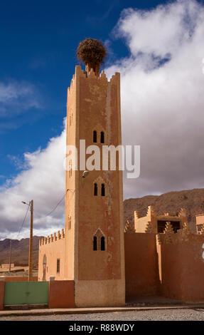 Morocco, Ziz River Gorge, Guers Tiallaline, storks nest on top of village mosque minaret - Stock Photo