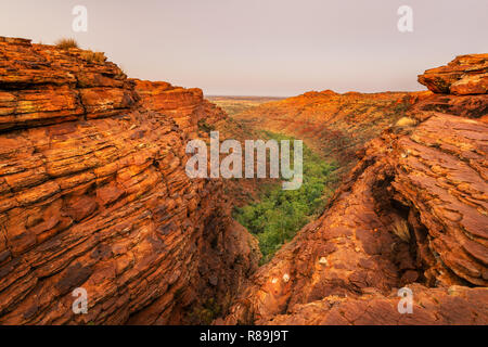 Spectacular view into the canyon of Watarrka (Kings Canyon) National Park. - Stock Photo