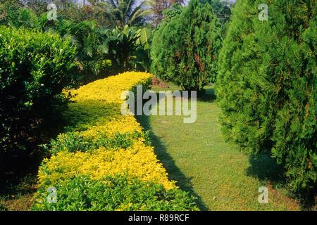Farm house garden in Panvel, Maharashtra, India - Stock Photo