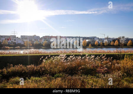 15.11.2018, Dortmund, North Rhine-Westphalia, Germany - Renatured Emscher at Lake Phoenix, Lake Phoenix is an artificial lake on the former steelworks - Stock Photo