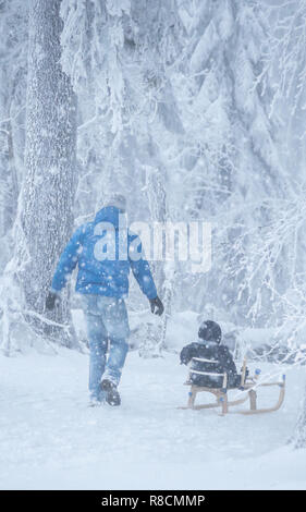 Father walks with his young children in the woods in winter. Winter activities in the snow. - Stock Photo