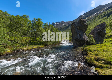The clearest stream in a mountain valley covered with birches in spring colors under a blue sky. Norway, around Hjelledalen. - Stock Photo